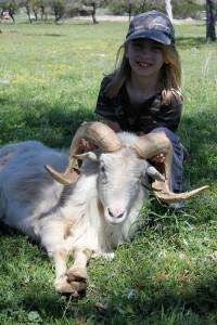 Gwen Hughes - Texas Dall -GirlIMG 0257